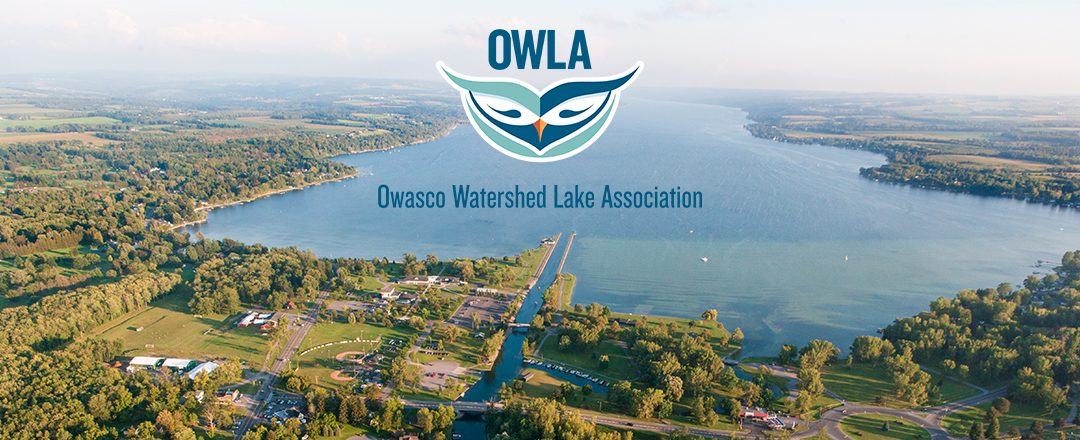 Ongoing efforts for a cleaner Owasco Lake by Rick Nelson